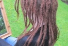 dreadlocks-22