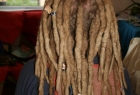 dreadlocks-34